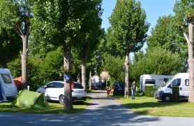 Campsite France Vendee, Emplacements arborés