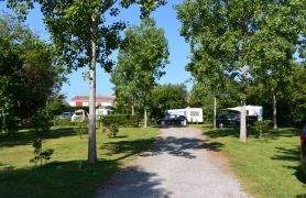 Campsite France Vendee, Emplacements herbeux